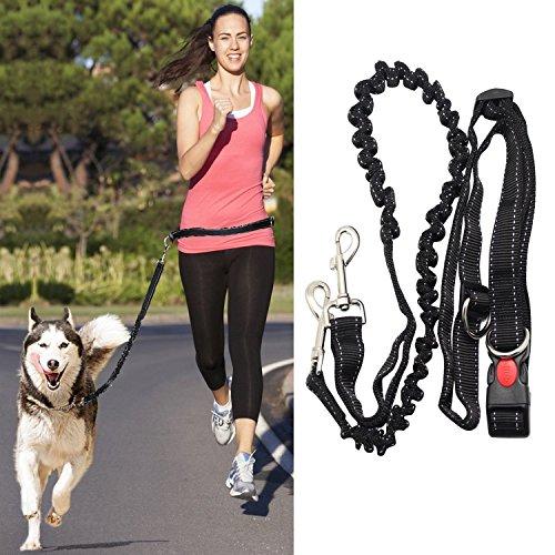 Hunde frei Leine Freisprech Hund Leine Jogging-Leine Nylon Hunde frei Hundeleine