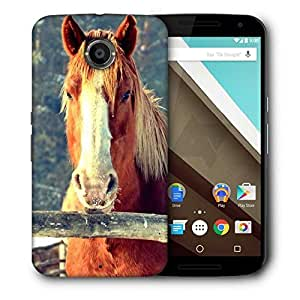 Snoogg Abstract Horse Printed Protective Phone Back Case Cover For LG Google Nexus 6