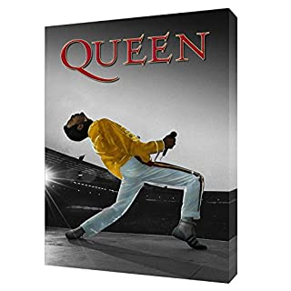 QUEEN'S FREDDIE MERCURY BW PRINT ON WOOD FRAMED CANVAS WALL ART 12x 8inch -38mm depth