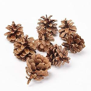 Pomme de pin 1gk 50 d coration de no l sapin austriaca - Decoration de noel amazon ...
