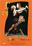 Tango Argentino - Curso de Tango II [Alemania] [DVD]