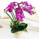 JFWMZyq Künstliche Blumen Freesie Topfpflanzen Home Dekoration Lila Ein