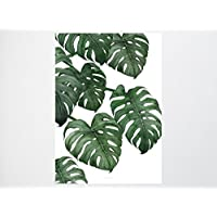 Kunstdruck Poster / Tropical No.