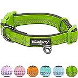 Blueberry Pet 2,5cm L 3M Reflektierendes Neopren-Gepolstertes Hundehalsband in Grün, Groβe Halsbänder für Hunde