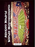 Atletico Madrid Wanda Metropolitano Notebook: Graph Paper: 4x4 Quad Rule, Student Exercise Book Math Science Grid 200 pages (Football Soccer Notebook)