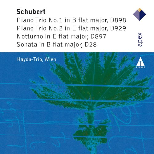 Piano Trio Op.99 In B Flat Major : III Scherzo - Allegro