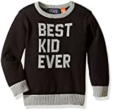 The Childrens Place Boys Colorblocked Intarsia Pullover Sweater
