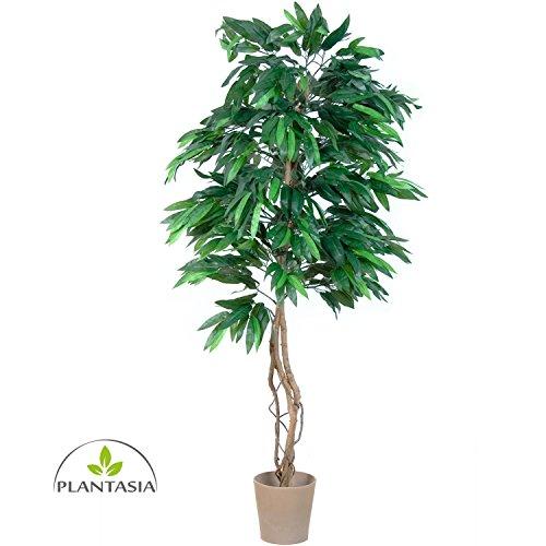 PLANTASIA Mangobaum, Echtholzstamm, Kunstbaum, Kunstpflanze – 180 cm, Schadstoffgeprüft
