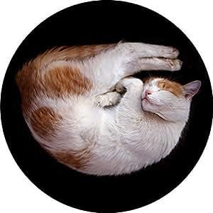 DJ Record Slipmats SLEEPY CAT DESIGN Slipmat x 1 (Single) birthday funny gift for him for her