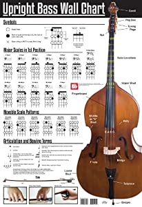 UPRIGHT BASS WALL CHART. For Double Bass