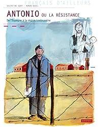 Antonio ou la résistance : De l'Espagne à la région toulousaine