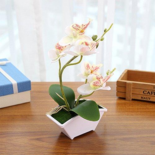 zantec simulación mariposa Orquídea con maceta en maceta Planta Artificial para casa jardín decoración de la oficina