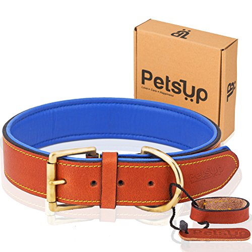 PetsUp® Royal Leather Dog Collar with Softly Padded Inside (Large, Tan with blue padding)