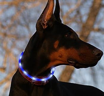 Collier pour chien DEL rechargeable USB en silicone réglable Vizpet, collier lumineux sécuritaire résistant à l?eau, avec lumière clignotante pour chiens domestiques