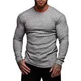 WWricotta Man's Autumn Winter Casual V-Neck Men's Slim Sweaters Tops Blouse (Grau,M)