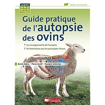 Guide pratique de l'autopsie des ovins