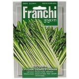 Franchi Chicorée-Samen, Catalogna Gigante Chioggia