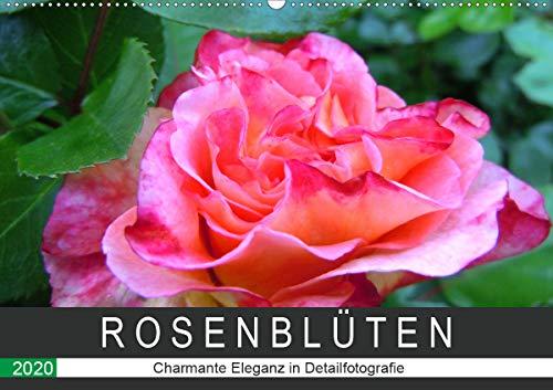 Rosenblüten. Charmante Eleganz in Detailfotografie (Wandkalender 2020 DIN A2 quer)