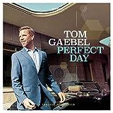 Perfect Day - Tom Gaebel