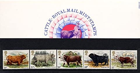 1984 Cattle Lot de présentation No. 151