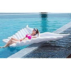 HEQUN Flotador inflable de la mariposa del ala del ángel con la fiesta de la piscina al aire libre de verano de las válvulas rápidas para los adultos y los cabritos (250x180 cm, Mariposas)