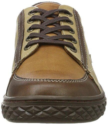 Andrea Conti Damen 0344500 Sneaker Braun (Dunkelbraun/Kombiniert)