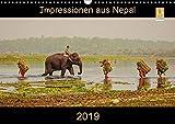 Impressionen aus Nepal (Wandkalender 2019 DIN A3 quer): Nepal entdecken - Farben eines besonderen Landes (Monatskalender, 14 Seiten ) (CALVENDO Orte)