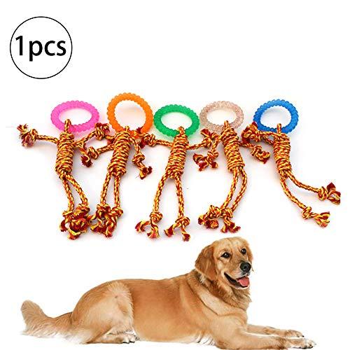 Hilai 1CP Hund Zähne beißen Seil Geflochtene Baumwolle resistent interaktives Spielzeug Ingwer Mann (Gelegentliche - Ingwer Mann Kostüm