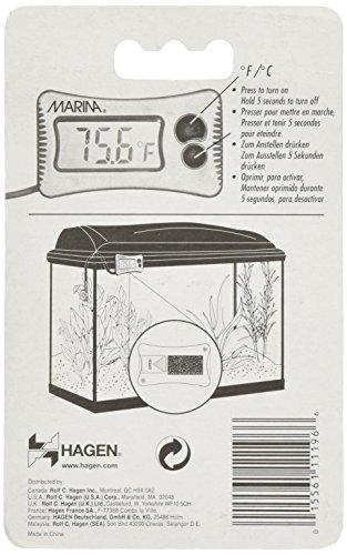 Marina Digital Thermometer 3