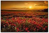 bestforhome-120x80cm Leinwandbild Sommerwiese Mohnblumen beim blühen auf Feld (Mohnblumenfeld) bei Sonnenuntergang Leinwand auf Holzrahmen