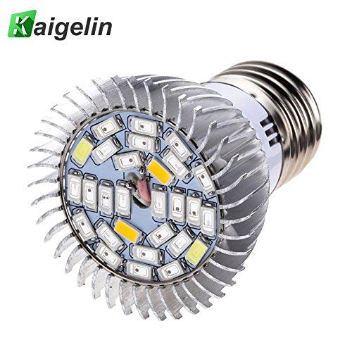 Yunt E27 LED Pflanzenlampe 5W LED Pflanzenleuchte Pflanzenlicht LED Grow Light Vollspektrum Pflanzenlicht Led Grow Lamp für Büro Haus Pflanzen Blumen 85V-265V (Led Grow Light E27)