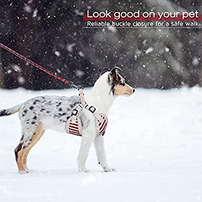 PETBABA Christmas Dog Harness, Soft Fleece Vest Warm Puppy in Winter, Front Clip Provide No Pull Choke Free Walk, Bow… 6