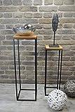 Livitat® Beistelltisch 2er Set Satztisch Pflanztisch Pflanzsäule Säulentisch Metall LV5018