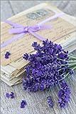 Posterlounge Forex-Platte 80 x 120 cm: Lavendel 3 von Andrea Haase Foto