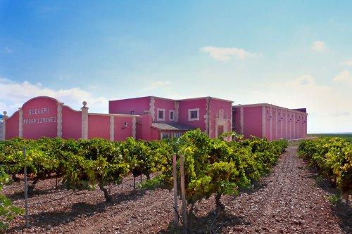 Irjimpa-Las-Mesas-Cuenca-Camino-Tinto-Tempranillo-trocken-6-x-075-l