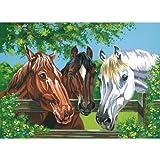 Reeves Malen nach Zahlen Pferde Gatter