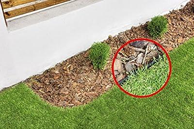 geoBORDER Rasenkante Beeteinfassung Beetumrandung Raseneinfassung Pflastersteine Rasenkanten Mähkante +Nägel von Land-Grid auf Du und dein Garten
