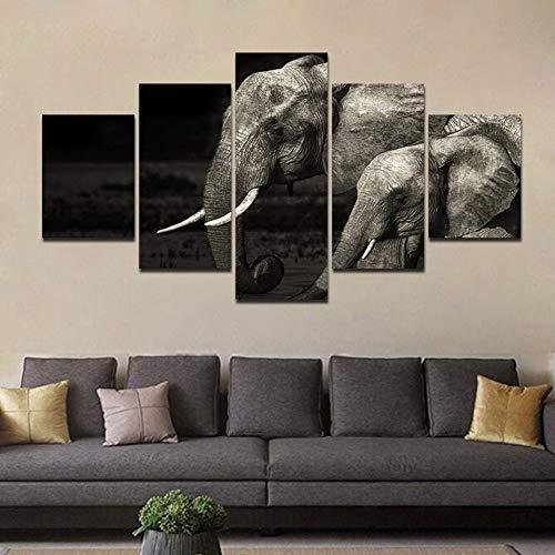 RALCAN Pinturas Modulares Decoración para El Hogar 5 Unidades Animal Elefantes Fotos...