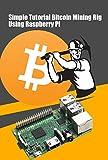 Simple Tutorial Bitcoin Mining Rig Using Raspberry Pi: How to Create a Raspberry Pi Bitcoin Miner (English Edition)