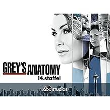 Grey's Anatomy - Staffel 14 [dt./OV]