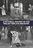 Pictorial History of the Welsh Tinplate Industry