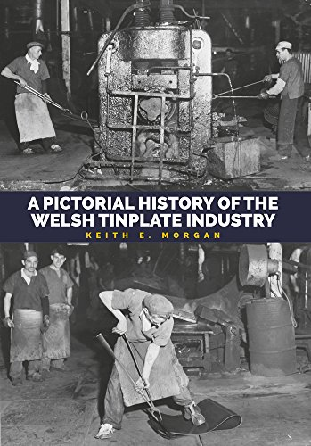 Pictorial History of the Welsh Tinplate Industry por Keith E. Morgan