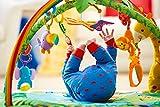 Fisher-Price K4562 Rainforest Erlebnisdecke Krabbeldecke mit Musik und Lichtern weichem Spielbogen Babyerstausstattung, ab 0 Monaten Vergleich