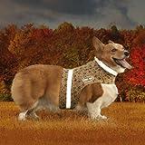 Corky 's Halsbänder see-me Hälfte Hund Weste, klein, Corky 's Camo