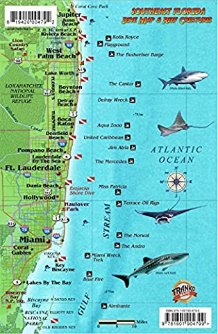 Southeast Florida Dive Map & Coral Reef Creatures Guide Franko Maps Laminated Fish Card