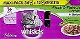 Whiskas 1+ Katzenfutter Fisch- und Fleischauswahl - 6