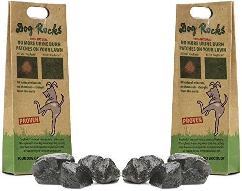 Dog Rocks 200g x 2 (4 month supply)
