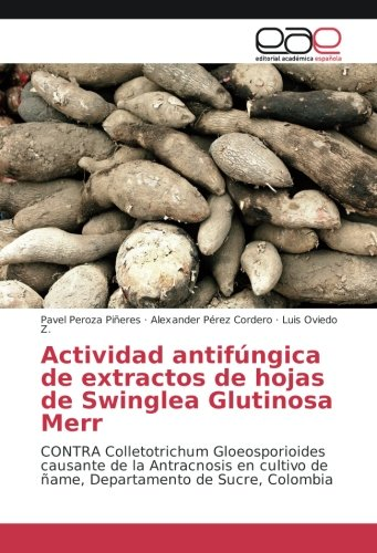 Actividad antifúngica de extractos de hojas de Swinglea Glutinosa Merr: CONTRA Colletotrichum Gloeosporioides causante de la Antracnosis en cultivo de ñame, Departamento de Sucre, Colombia por Pavel Peroza Piñeres