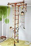 NiroSport FitTop M1 HS Klettergerüst Sprossenwand Turnwand Kindersportgerät Heimsportgerät mit Holzsprossen und Klimmzugstange inkl. Turnringe Klettertau Strickleiter Trapezstange