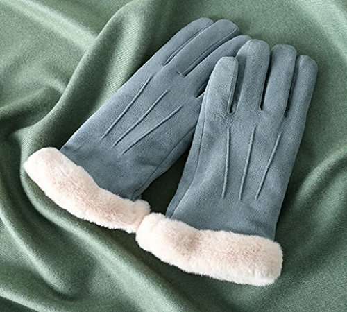 Longless Winter Ladies Radfahren fahren Plüsch dicker Non-Slip Touchscreen warme Baumwoll-Handschuhe (Slip North The Face)